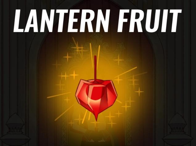Lantern_Fruit